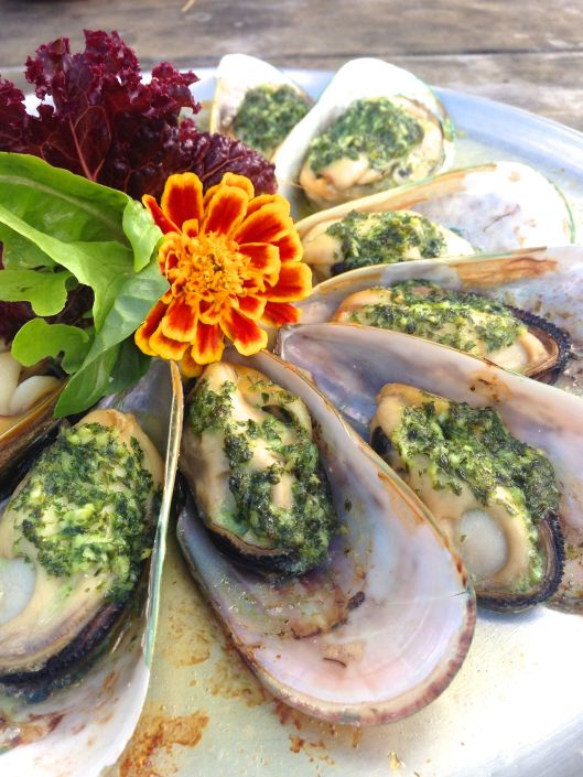 coromandel mussel kitchen