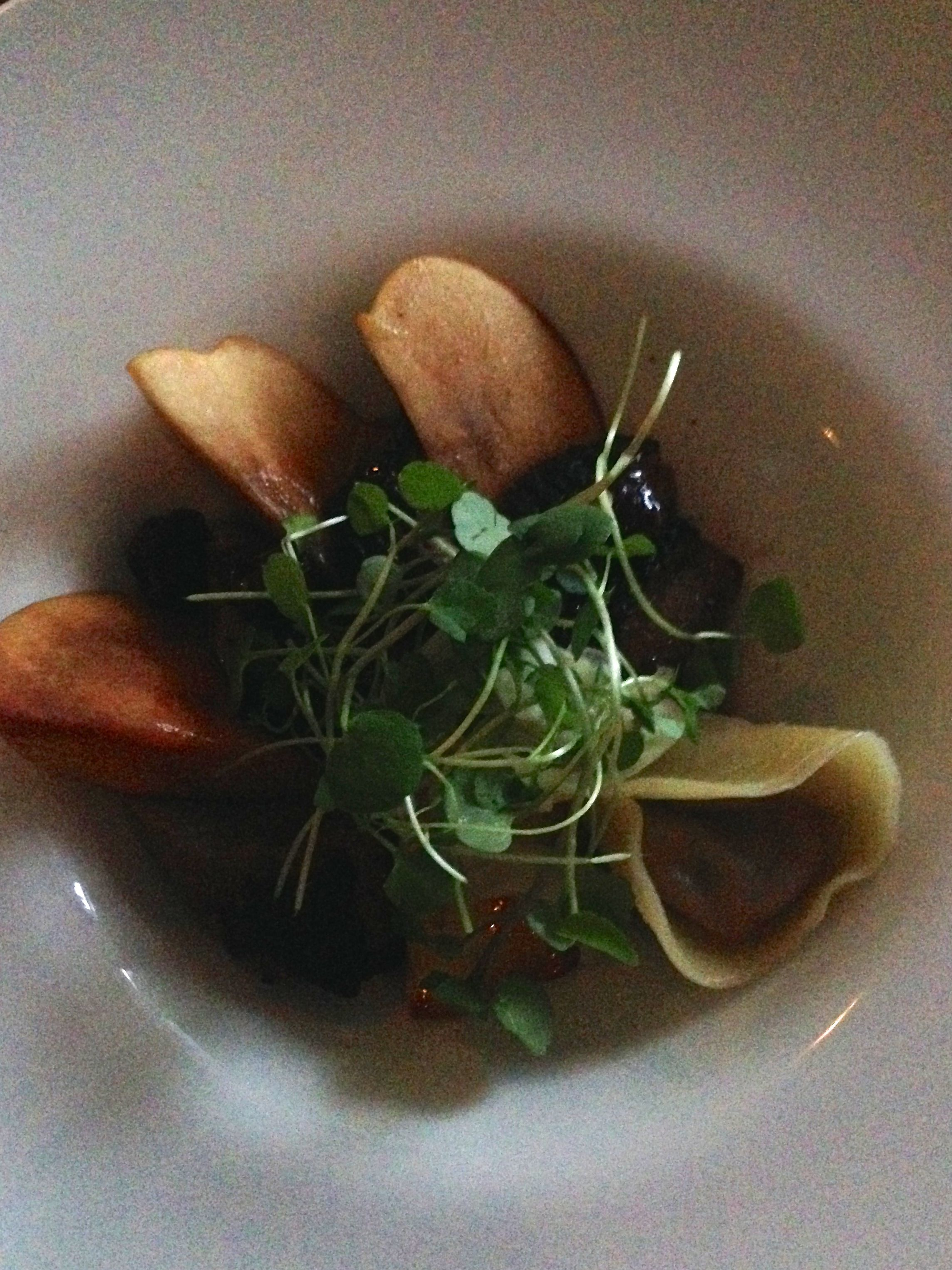 Smoked Duck Breast with Confit Duck Tortellini, Nectarine, Fennel and ...