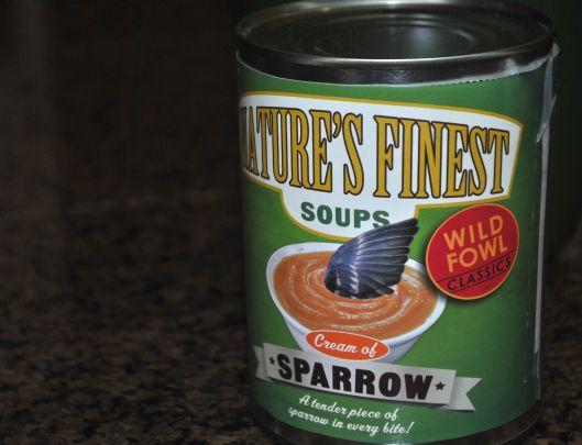 sparrow soup