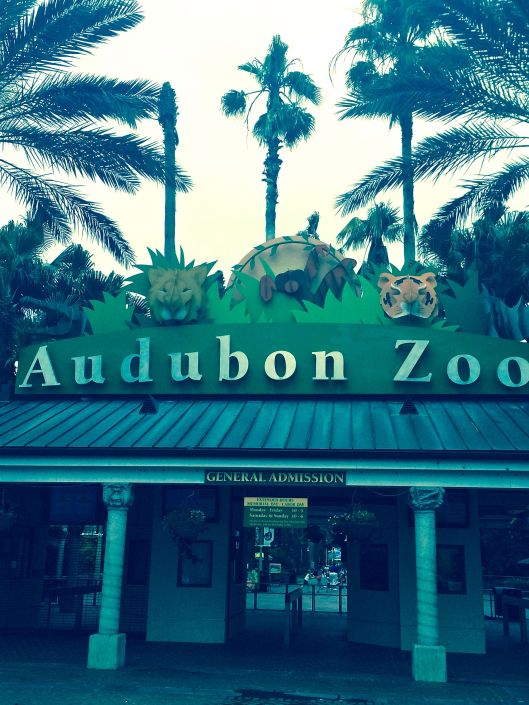 the Audubon Zoo entrance