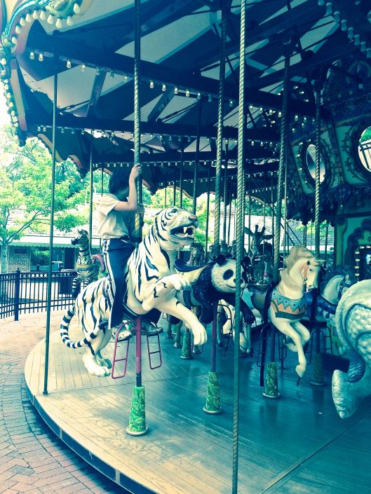 the whimsical carousel