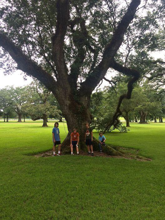 the boys at Oak Alley Plantation