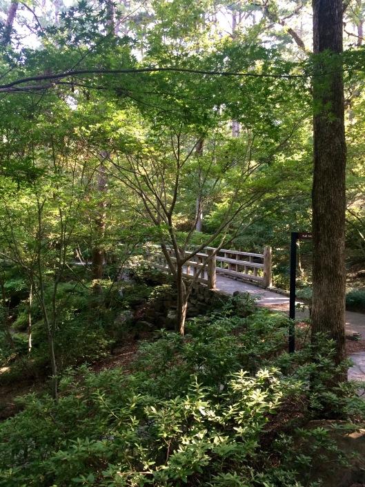garvan gardens - beautiful trail