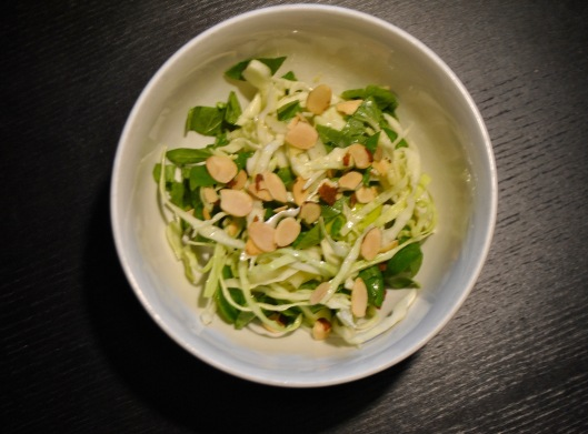 green cabbage apple fennel slaw