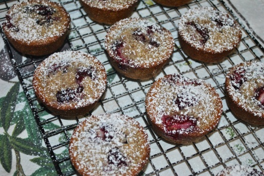 blackberry financiers